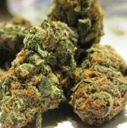 Cookies Crumble weed
