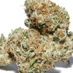 Death Star OG Cannabissanta monica los angeles