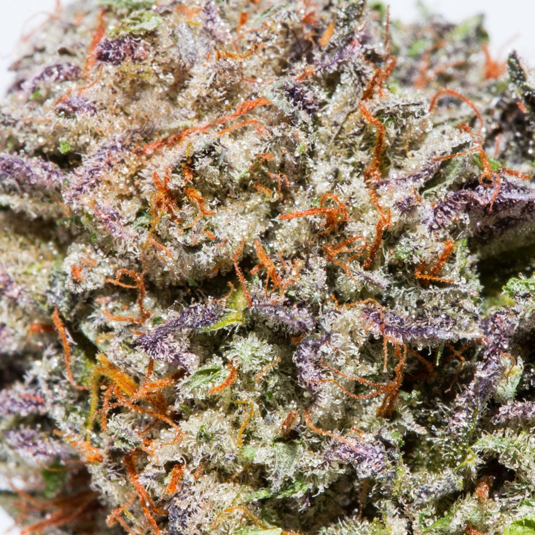 Platinum Bubba Kush Cannabis Santa Barbara Pot Valet