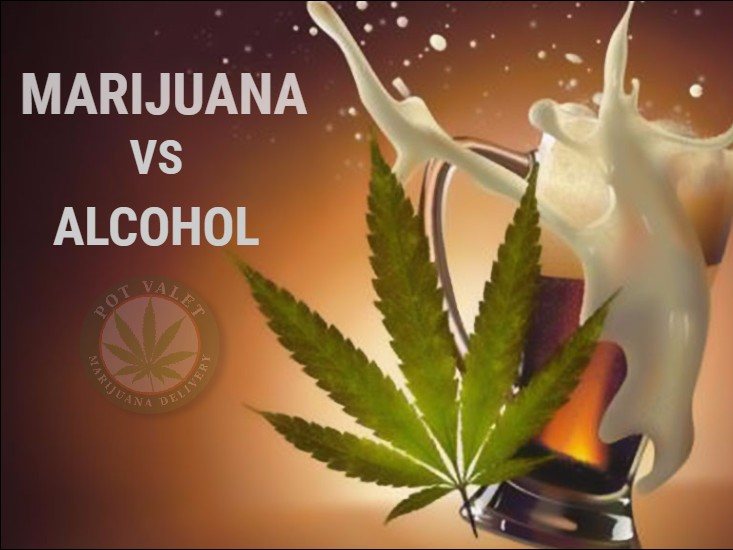 Marijuana is More Harmful than Alcohol