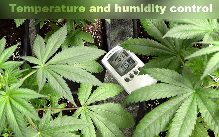 Temperature And Humidity Control
