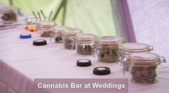 Cannabis Bar at Weedings