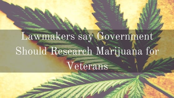 Marijuana for Veterans, Research Marijuana, Research for Marijuana