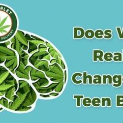 Weed Really Change the Teen Brain